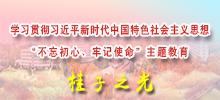 华中师大理论学习网